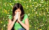 Může domácí med pomáhat proti alergiím?