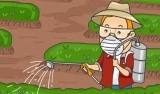 Pesticidy jako vážná hrozba pro včely – rozhovor s ing. Titěrou