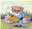 Vláda projedná dotace pro včelaře, měly by být vyšší