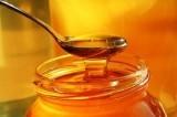 Drsný sladký byznys. Falšování medu je stále rozšířené