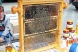 Nejdecká pouť se včelaři - podruhé