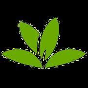 Praktické aplikace pro včelaře – Pl@ntNet – určování rostlin